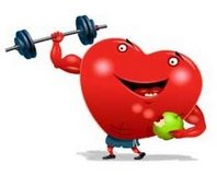 kolesterol_kalp_spor