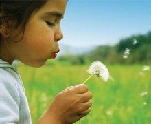 polen-alerjisi-kapak