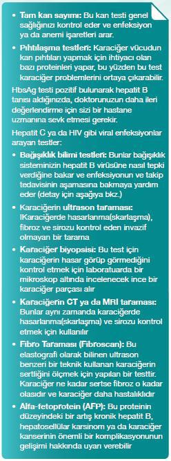 kutu-2 hepatiti b testleri devamı
