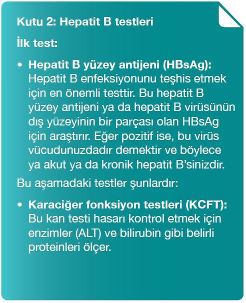 kutu2-hepatit b testleri