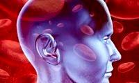 kan-beyin-bariyeri