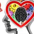 kalp-beyin-hipertansiyon