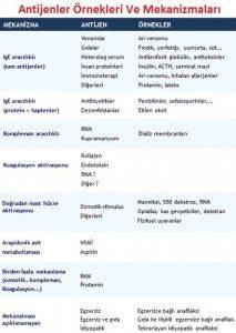 anafilaksi-tedavisi1