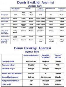 demir-eksikligi-anemisi3