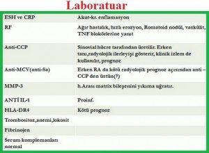romatoid-artrit-RA2