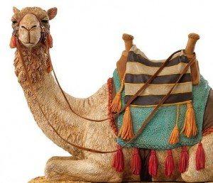 deve-camel