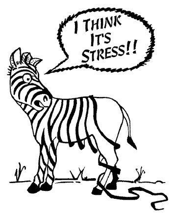 stres sebepleri