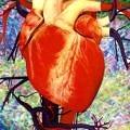 kalp-kok-huce-yetmezlik