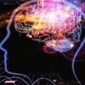 beyin-sinyal-tarama