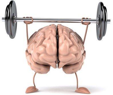 beyin-spor-halter
