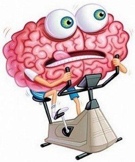 beyin-spor