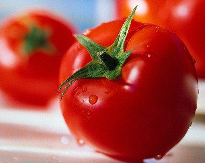 tomato-domates