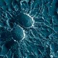 antibiyotik-yerine-nanolizozom