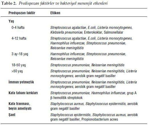 menenjit-neden-olan-bakteriler