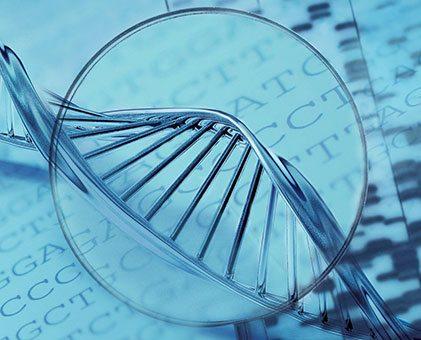 dna-genetik-buyutec1