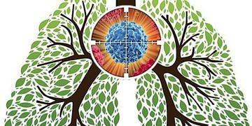 Küçük hücreli dışı akciğer kanserinde hedefleyici tedaviler