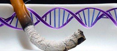 sigara-genetik