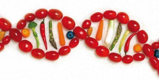 obezitenin-sorumlusu-genlermidir
