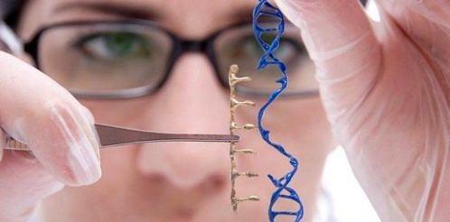gen dna ekleme