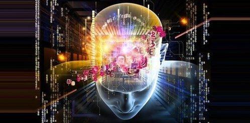 kafa-beyin-zeka-bilgi
