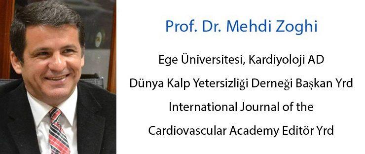 mehdi-zoghi-esc1