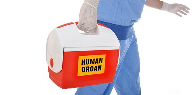 organ-nakli-transplant-3
