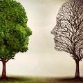 beyin-bipolar-kafa-ruhsal