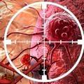 kanser-hucre-damar-hedef-5