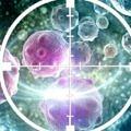 kanser-hucre-damar-virus-hedef-2