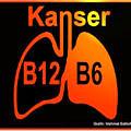 kanser-32-log