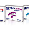 Enferox-ilko