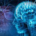 beyin-kafa-epilepsi