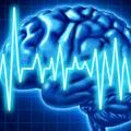 beyin-kafa-epilepsi-2