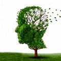 Alzheimer-unutkanlik-kafa-beyin