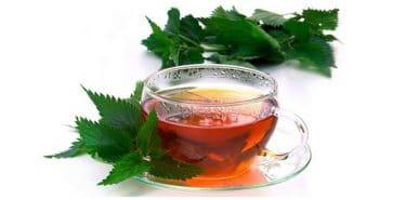 Isırgan otu çayı