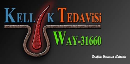 way31660-logo