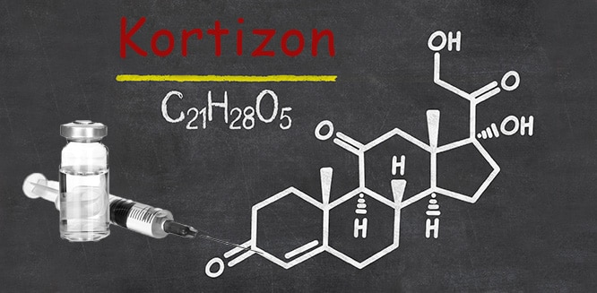 kortizon ile ilgili görsel sonucu