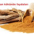 meyan-koku-Licorice-Root-8