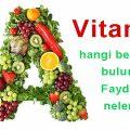 vitamin-a-salata-besin