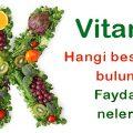vitamin-k-sebze-besin-meyve-3