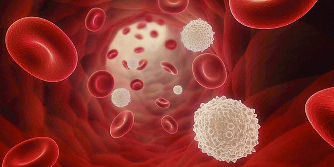 Krónikus prosztatitis DGPH 1 Prostatitis a férfiak kezelésében népi jogorvoslatok