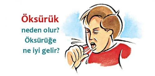 oksuruk-hapsirma-nezle-grip-2b