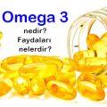 omega-3-balik-vitamin-besin-hap-2b