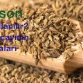 anason-anise-tohum-24