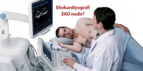 EKO–elektrokardiyogram-Echocardiogram-kalp-1