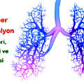 pulmonary-hypertension-hipertansiyon-akciger-1