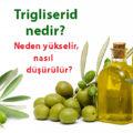 Trigliserid-kolesterol-zeytin-yag-22